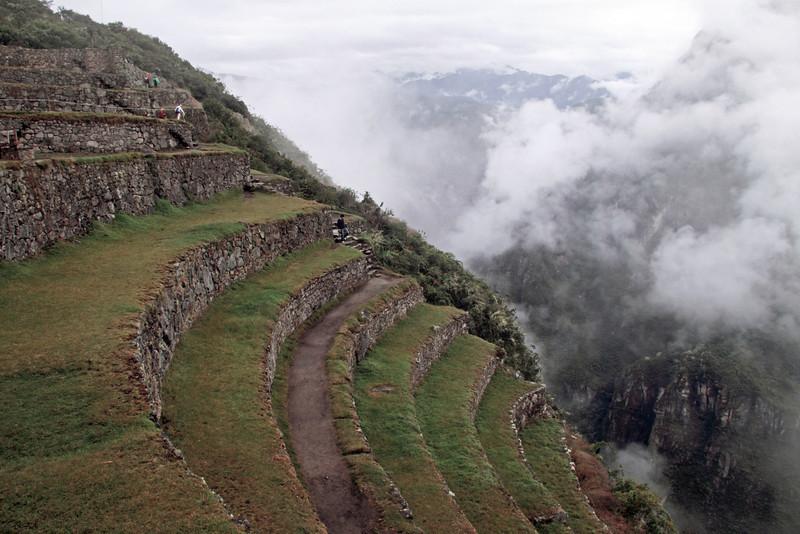 Machu Picchu 4777<br /> Terraces used for farming by the Incas at Machu Picchu.