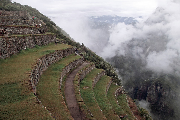 Machu Picchu 4777<br /> Terraces used for farming by the Incas at Machu Picchu.