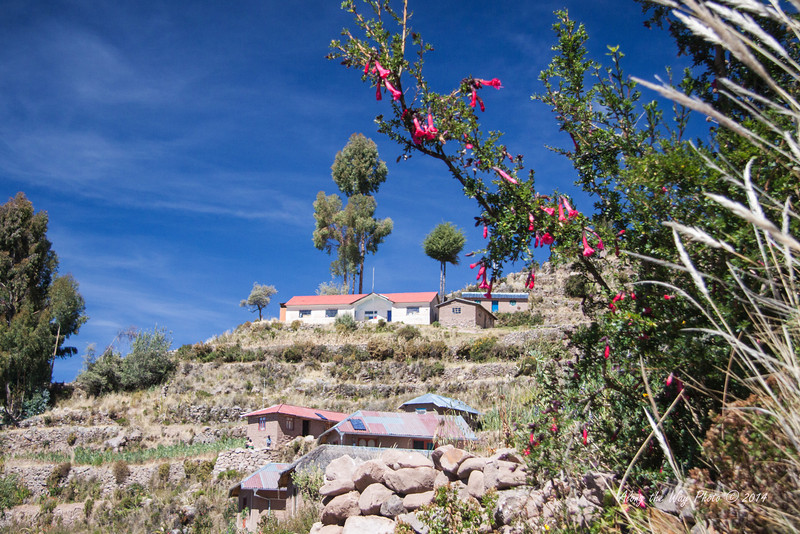 Titicaca 5394<br /> Homes on side of hill on the Port Alsuno Island on Lake Titicaca.