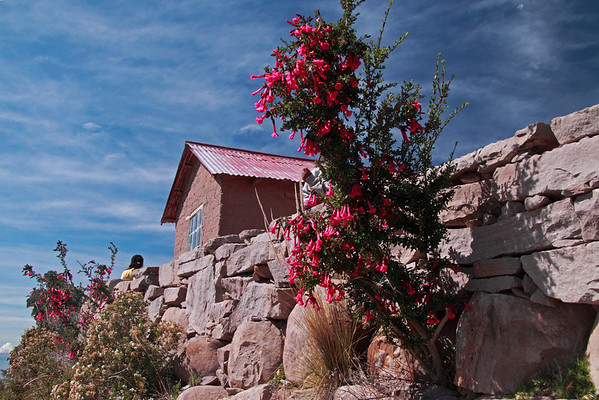 Titicaca 5351<br /> Small House on Taquile island just up from Port Alsuno towards the top of the island in Lake Titicaca.