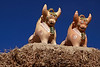 Family Farm 5822<br /> Many of the families will have a pair of bulls on their roof for good luck.