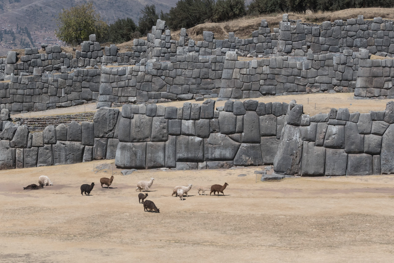 Sacsaywaman and Alpaca (including a couple rolling around in the dirt)