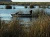 Los habitantes de las islas Uros, recogen a menudo la Totora para reponer las antiguas dañadas.