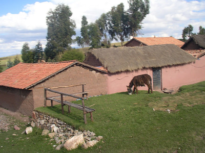 Little house and donkey.