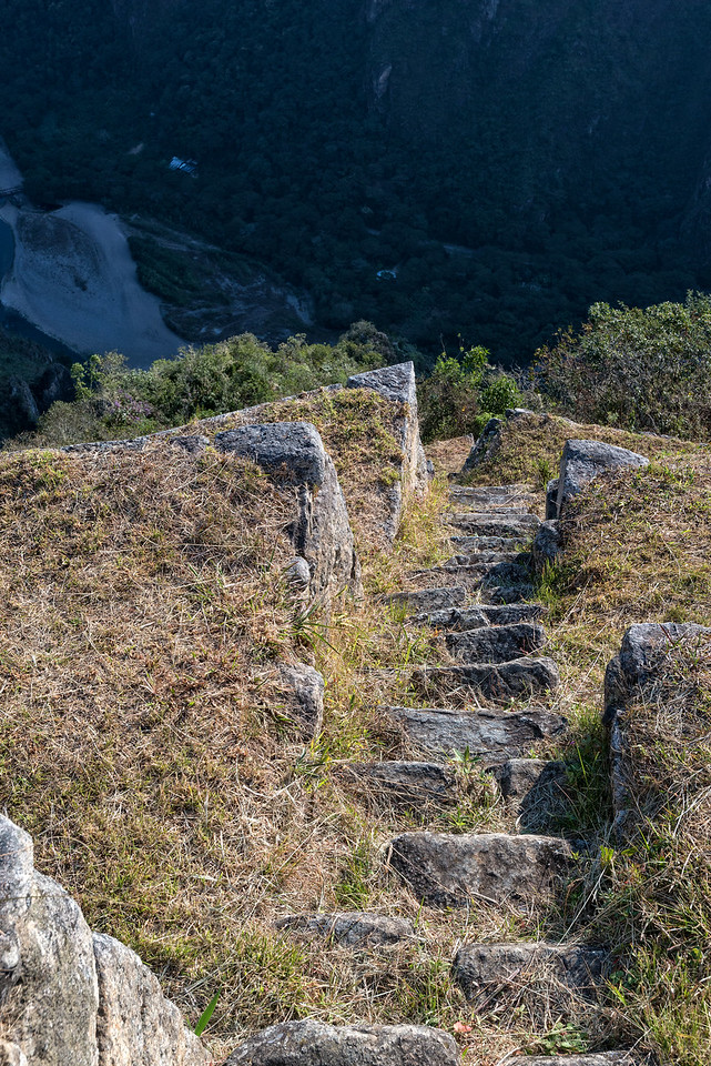 Incan steps descend from Machu Picchu