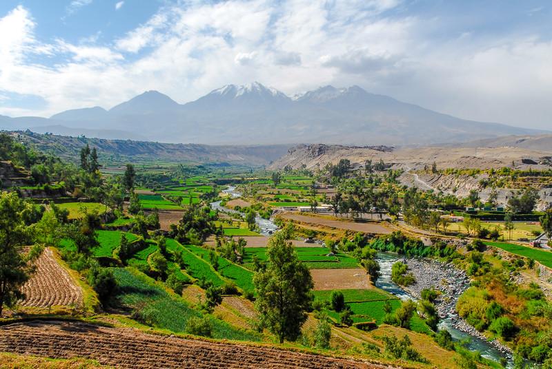 Inca Garden and Misti Volcano - Arequipa, Peru