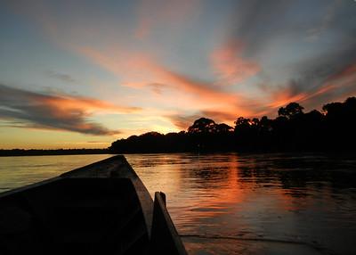 Peru 2012: Eco Amazonia Lodge (Rio Madre de Dios - Puerto Maldonado, Peru)