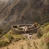 Inca Trail Day 3 - Leaving Runkurakay