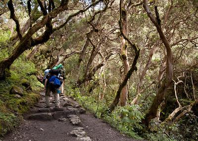 Inca Trail 2012