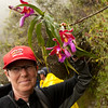 Inca Trail Day 4 - Orchids