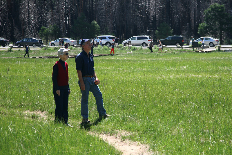 Yosemite Valley (2013).