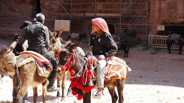 Petra - -1020196