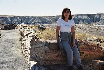 11/12/99 Crystal Forest, Petrified Forest National Park. Navajo County, AZ
