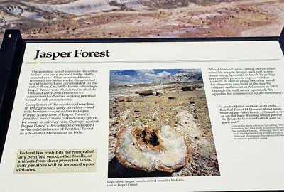 11/12/99 Jasper Forest, Petrified Forest National Park. Navajo County, AZ