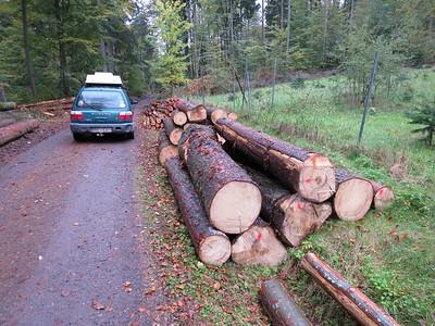 Lagere kwaliteit voor spaanplaat. Dit hout is een probleem. Blijft te lang in het bos liggen.