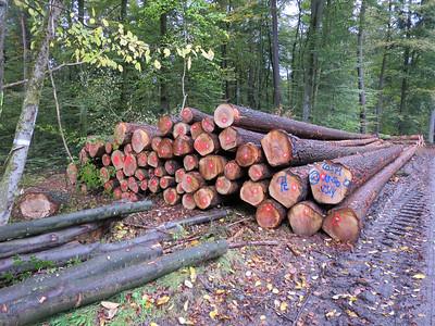 Constructiehout: PP balken en planken