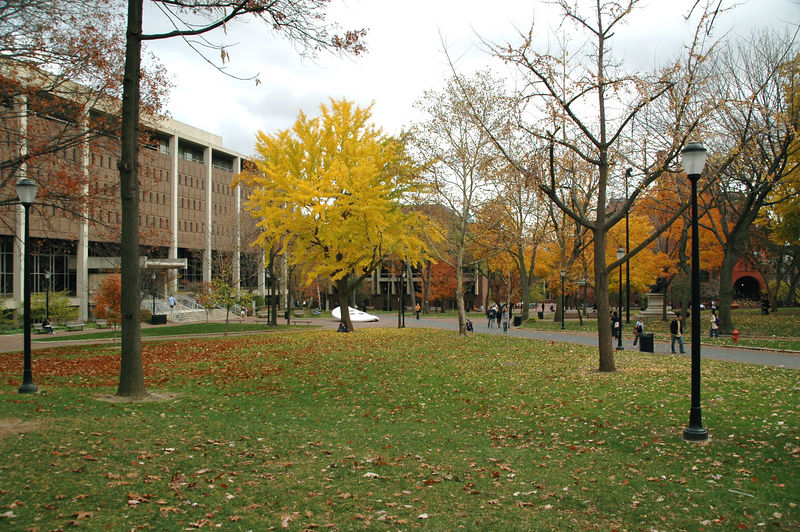 Blanche Levy Park and Van Pelt Library