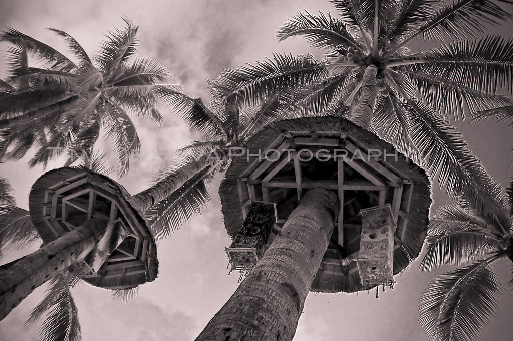 Infrared Coconut Trees<br /> Boracay Beach<br /> Philippines