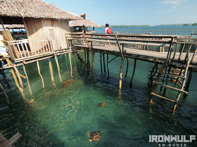 Sibadan Fish Cages with captive turtles