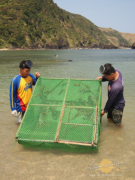 A lobster cage