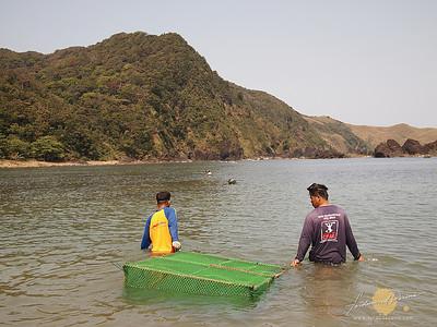 Taggat Lagoon, Lakay-lakay
