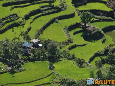 Batad to Bangaan Back Trail, Dotal Rice Terraces