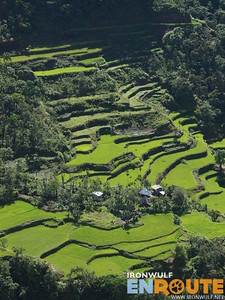 Batad to Bangaan Back Trail, Dotal Rice Terraces