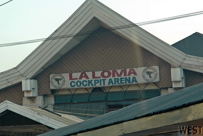 One of the most popular sports in the Philippines.  Boxing, Basketball, and Pool are others.