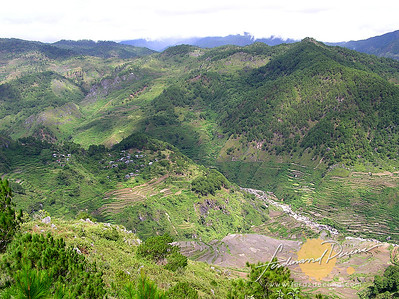 Kitlepan View