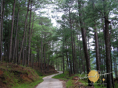 Sumaguing Road