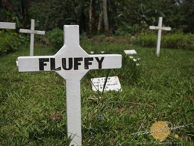 Tagaytay, Cavite Paradizoo - Pet Cemetery