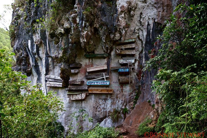 Hanging coffins in Sagada