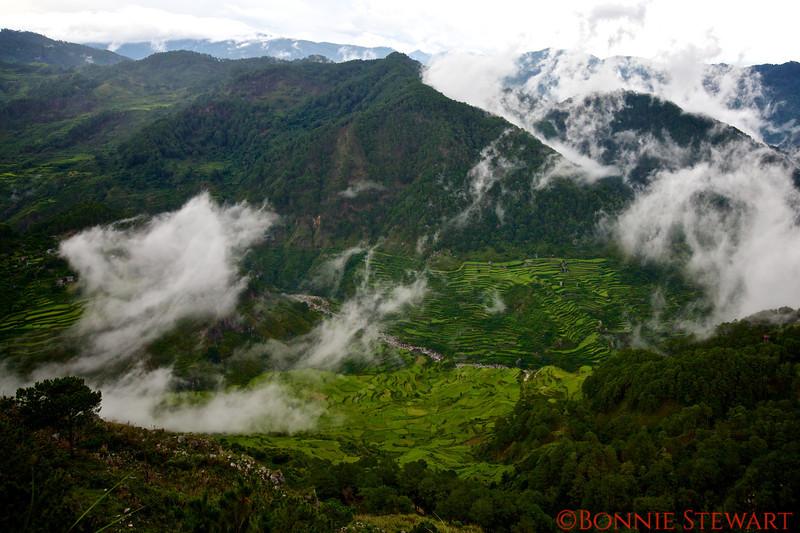 Kiltipan rice terraces and mountain view in Sagada