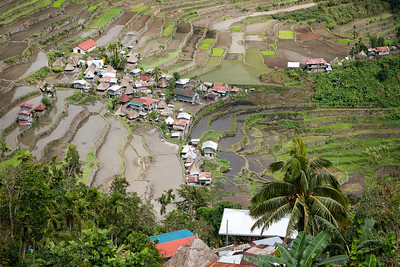 Batad village. On most of the terraces the rice hasn't been planted yet at this time of the year.