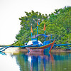 Philippines2011-SLR-361