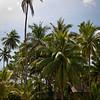 Bohol-20110205-IMG_4213