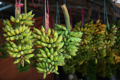 Senoritas (small indigenous bananas) at a roadside fruit stand