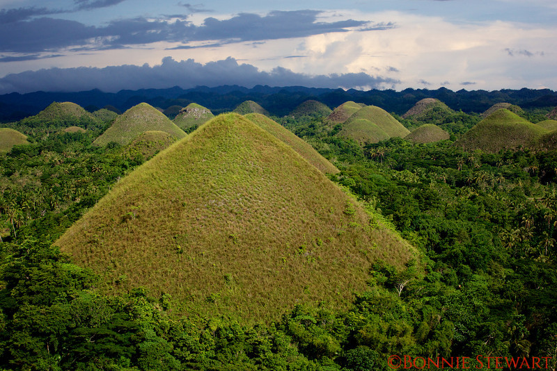 Chocolate mountains in Bohol Island.  They look green in this photo due to recent rains