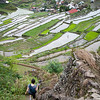 Back in Batad, going down the maany stairs into the village.