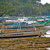Philippines2011-SLR-368