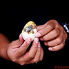 Balut - a fertilized egg that is eaten as a delicacy