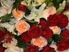 Philly-Flower_2014_Mar_38