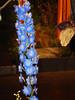 Philly-Flower_2014_Mar_33