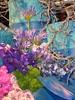 Philly-Flower_2014_Mar_40