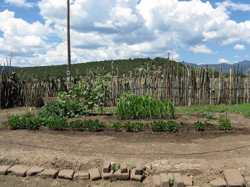 A small garden next to the hacienda.