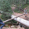 Most fun on the trip was this teeter-totter that we built over the creek.