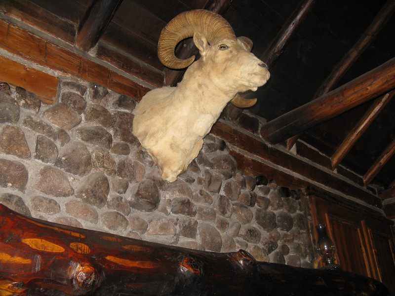 We got to take a tour of the inside of the cabin. Ram's head over the fireplace.