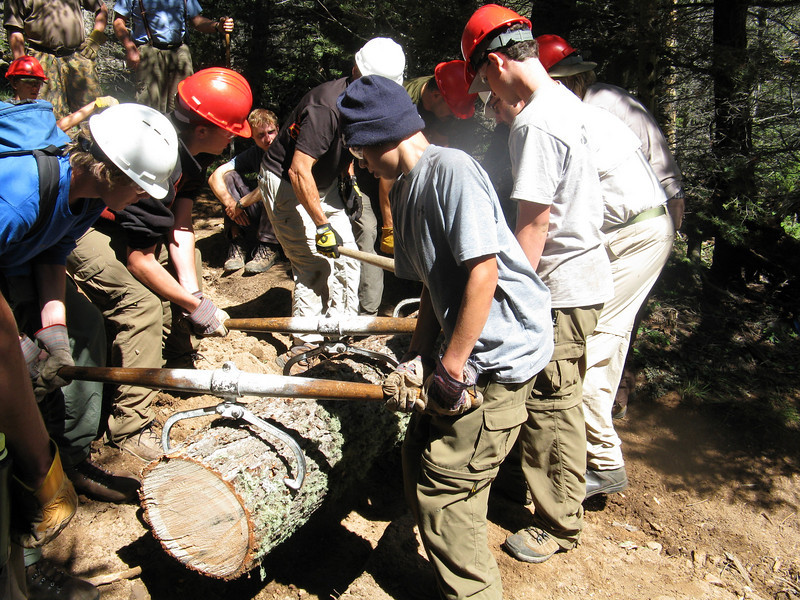 The log gets sized up and the trench is adjusted, then it goes in and gets buried. Eventually it will decay.