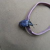 Interesting blue beetle with black spots.