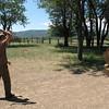 Throwing tomahawks.